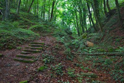 Der Felsenweg 5