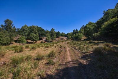 Naturreservat Kullaberg