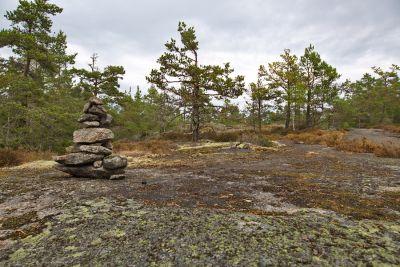 Tyresta Nationalpark